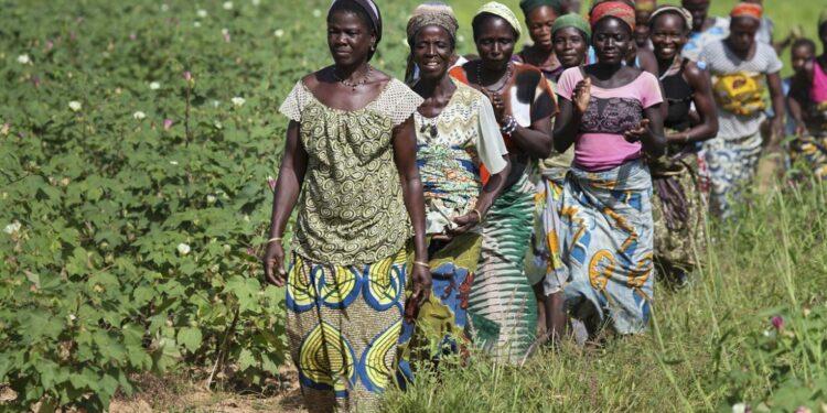 2013. Photo coverage for UNDP Benin